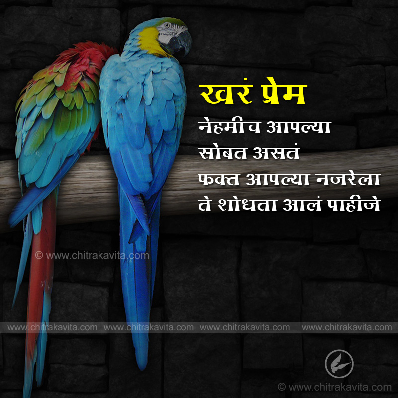 True-Love  - Marathi Quotes