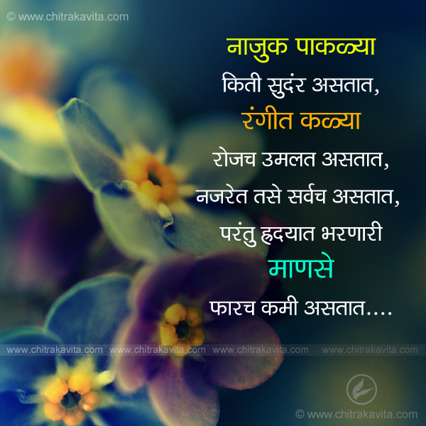 People Marathi Relationship Quote Image