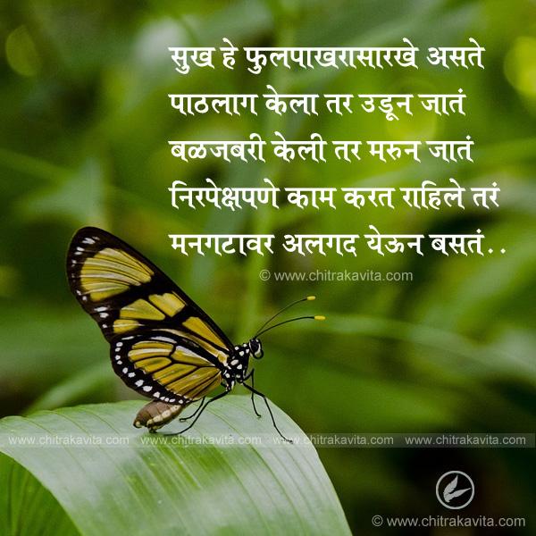 sukh-he-fulpakhrasarkhe Marathi Positive Quote Image